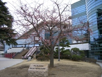 Nakayama22