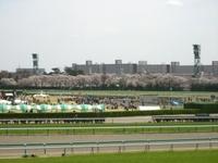 Nakayama62